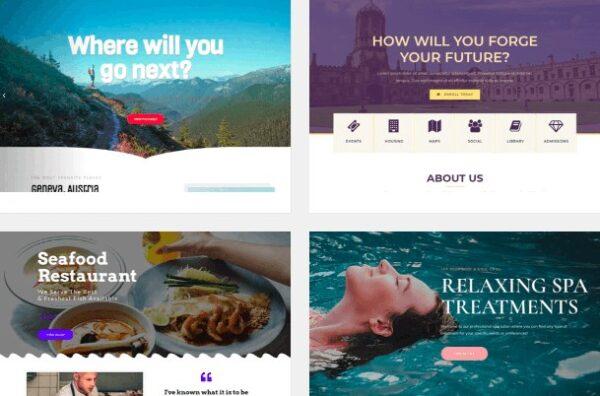 Premium Starter Website Package