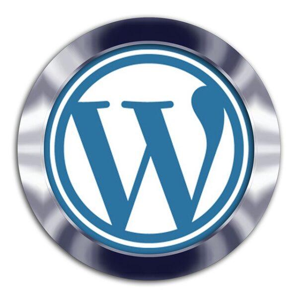 WordPress Premium Maintenance Plan