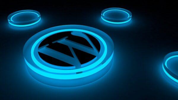 WordPress Advanced Support Maintenance Plan